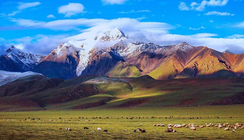 西藏有些什么好玩的地方和旅游景区_西藏旅游攻略